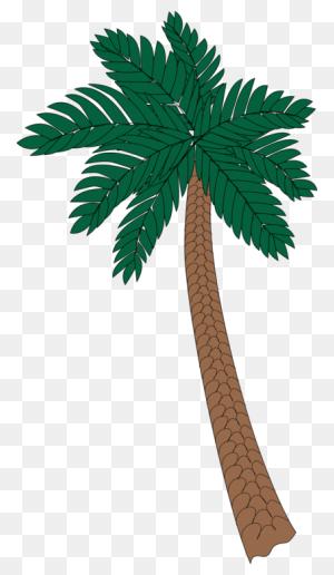 Asian Palmyra Palm Arecaceae Tree Sabal Palm Date Palm Free - Palm Tree Island Clipart