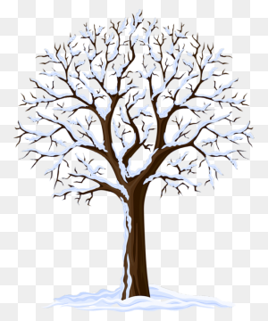 Bildites Winter Trees, Tree Clipart, Winter - Winter PNG