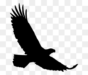 Bird Silhouettes Silhouettes Of Bird Free - Bird Vector PNG