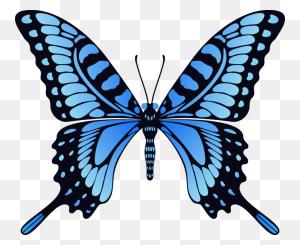 Butterflies Butterfly, Blue - Blue Butterfly PNG