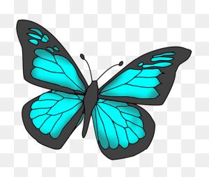 Butterflies Cartoon Butterfly Clipart Butterfly - Angel Wings Clip Art