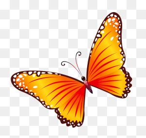Butterflies Clipart Transparent Image Gallery Dirdoo Butterfly - Butterfly Images Clip Art