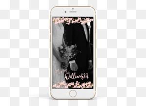 Cherry Blossom Branches Cherry Blossoms, Weddings And Wedding - Cherry Blossom Branch PNG
