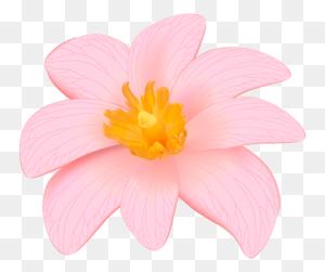 Flower Designes Flower Clipart - Pink Flowers PNG