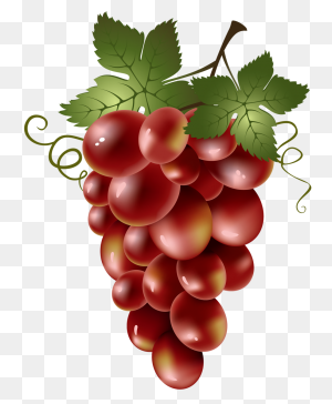 Fruits Fruit, Art And Fruit Painting - Vegetables PNG