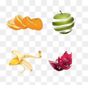 Fruits Transparent Png Images - Fruits And Vegetables PNG