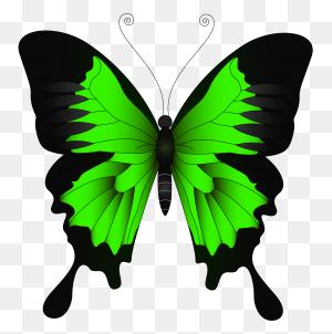 Green Butterflies Clipart, Green Flying Butterfly Png Clip Art - Butterfly Body Clipart