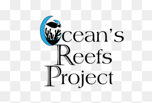 Home The Oceans Reefs Project - Reef PNG