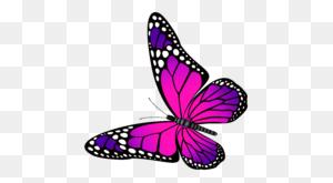 Monarch Butterfly Vector Clip Art Butterflies - Monarch Butterfly Clipart