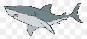 Ocean Animals Animal, En, Fish, Ocean, Ocean Animals Glogster - Sea Animals Clipart