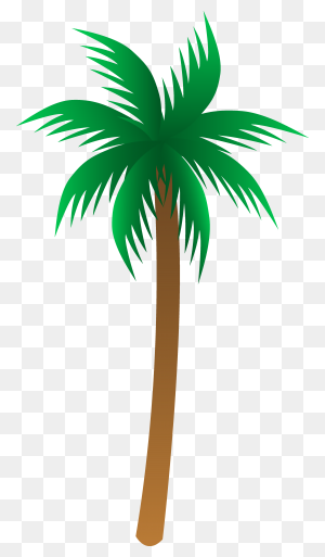 Palm Tree Art Tropical Palm Trees Clip - Palm Tree Clipart Black And White