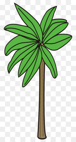 Palm Trees Date Palm Plants Flowering Plant - Palm Tree Island Clipart