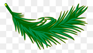 Palm Trees Palm Branch Palm Leaf Manuscript Frond - Palm Tree Leaves PNG