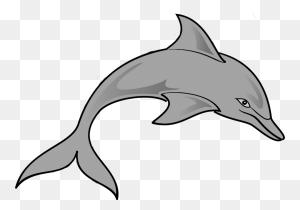Png Ocean Animals Transparent Ocean Animals Images - Ocean Animals Clip Art