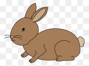 Rabbit Clipart Rabbitclipart Bunny Rabbit Clip Art Animals Photo - May Clipart