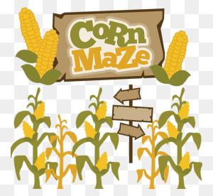 Youth Trip To Heap's Giant Pumpkin Farm Corn Maze Dgfumc - Pumpkin Farm Clipart