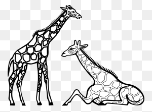 Zebra Clipart Black And White Giraffes Line Art Coloring - Zebra Clipart Black And White