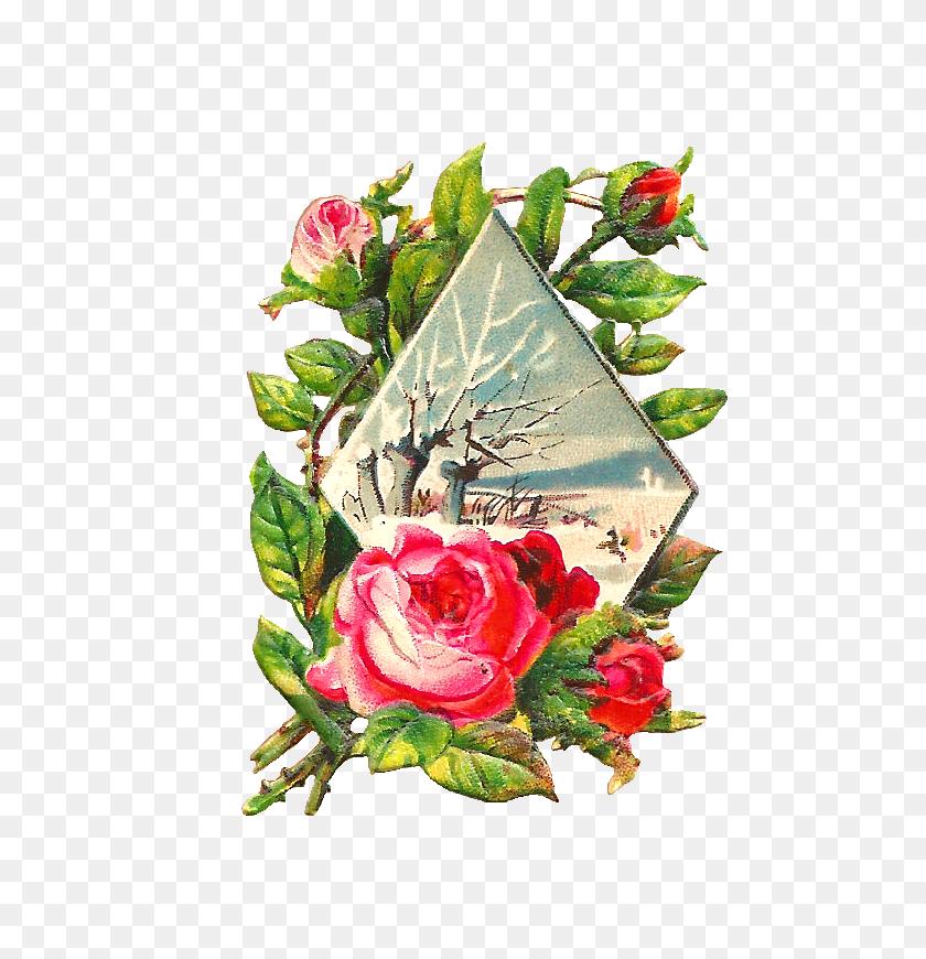 710x810 Winter Flowers Clipart
