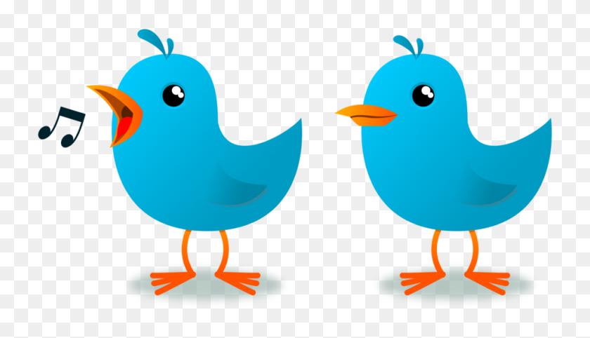Cartoon Bird PNG