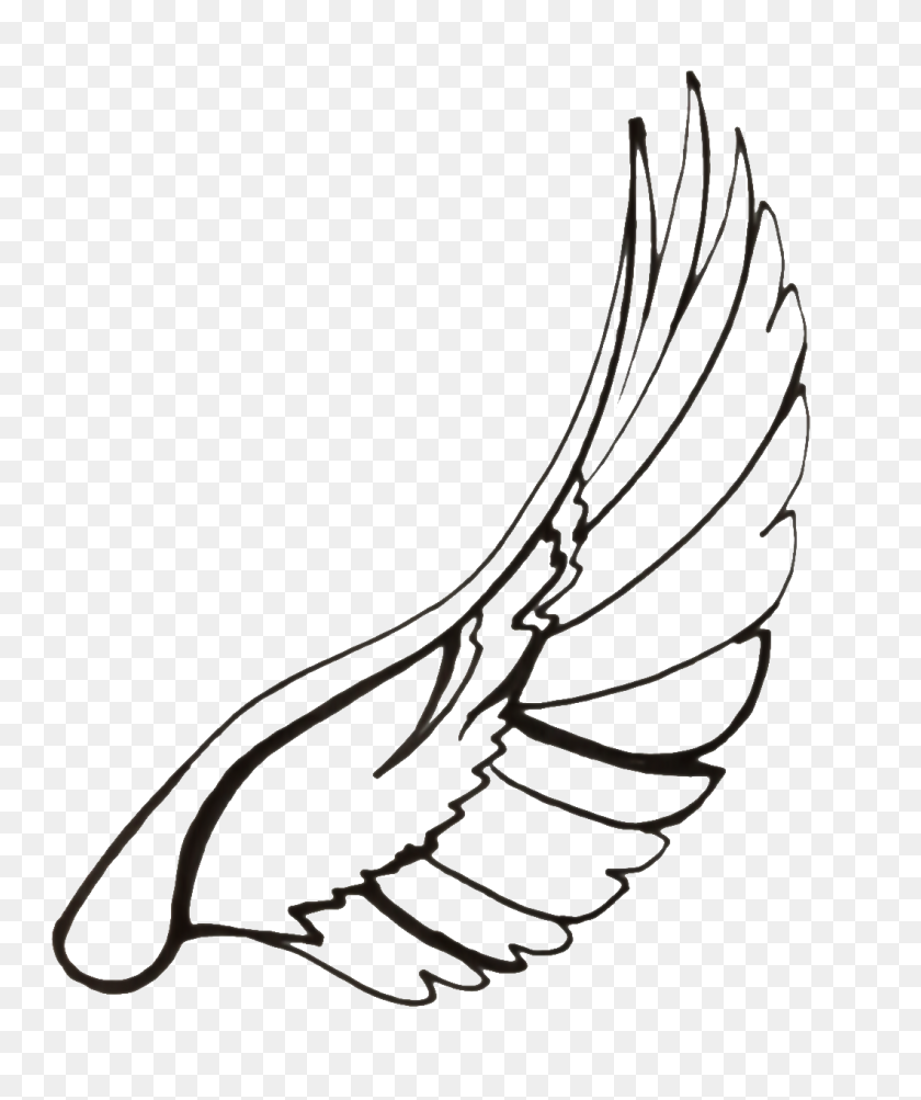 Feather Clip Art Black And White