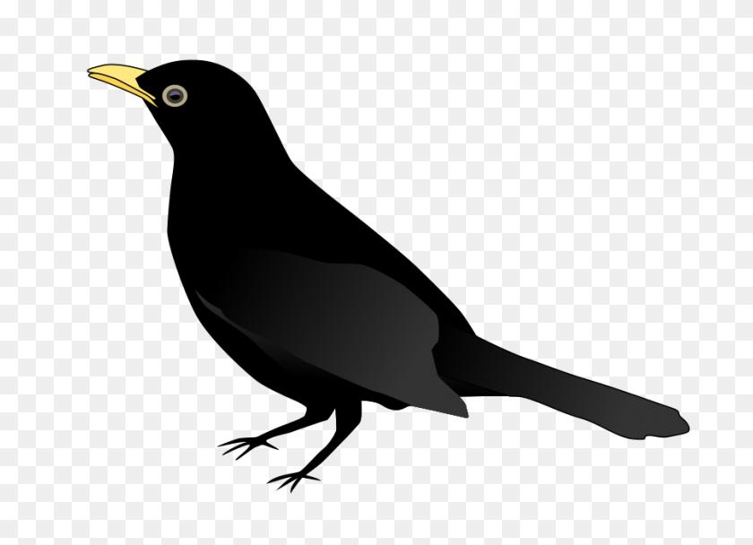 A Black Bird Clip Art - White Bird Clipart