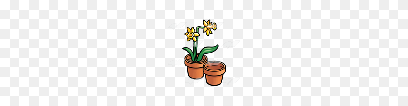 Abeka Clip Art Pots Of Daffodils Two Pots - Daffodil Clip Art