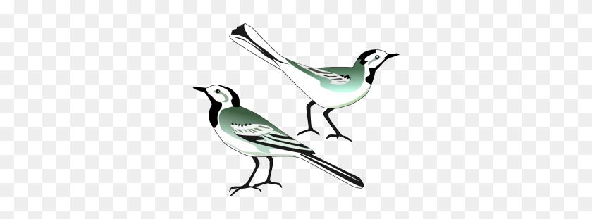 Alba Clip Art Download - Mockingbird Clipart