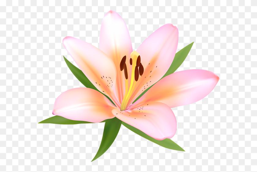 600x502 Alstroemeria Deco Flower Png Clip Art Gallery - Winter Flowers Clipart