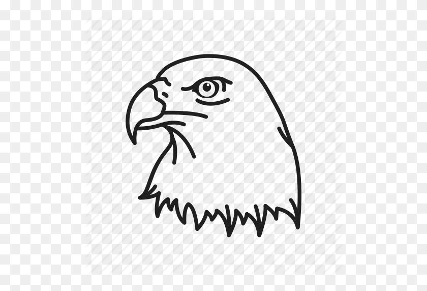 American Eagle, Bald Eagle, Bird, Eagle, Eagle Head, Independence - Eagle Head PNG
