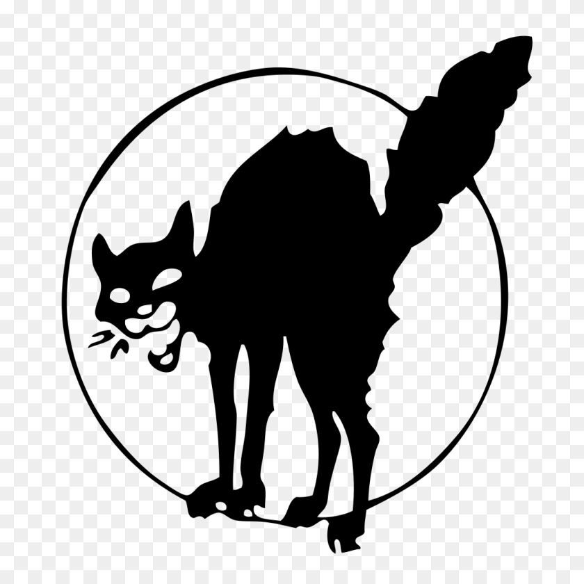 Anarchist Black Cat - Black Cat PNG