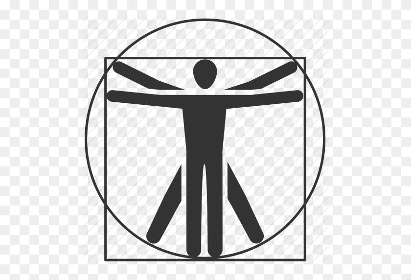 Anatomy, Body, Human, Human Body, Human Scale, Organ, Person Icon - Human Body PNG