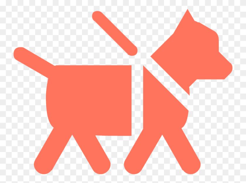 Andover, Ma North Andover, Ma Dog Walkers Dog Walking - Dog Leash Clipart