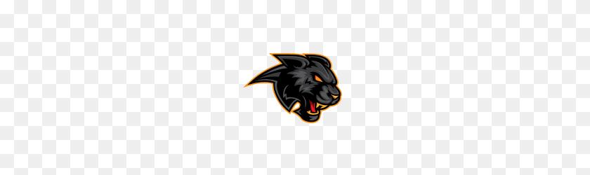 Angry Black Lion Roar - Lion Roar PNG