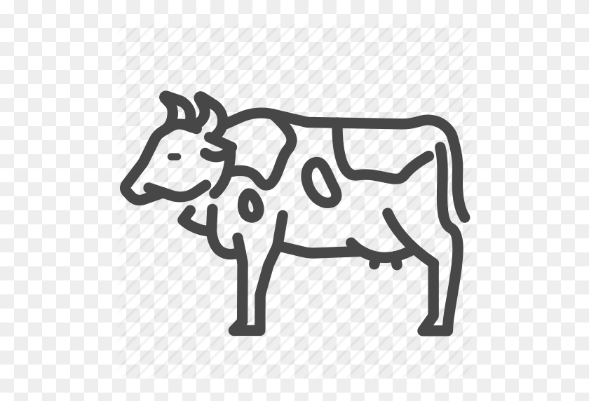 Animal, Cattle, Cow, Dairy, Milk Icon - Milking A Cow Clipart