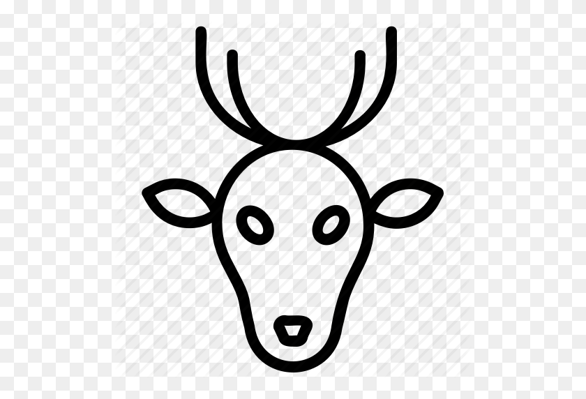 Animal Deer, Deer Antlers, Deer Creek, Deer Lake, Musk Deer Icon - Deer Antlers PNG