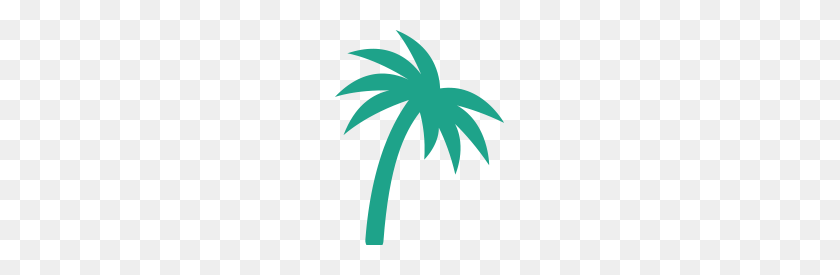 Animal Emergency Hospital After Hours Care Island Animal Hospital - Palm Tree PNG Transparent