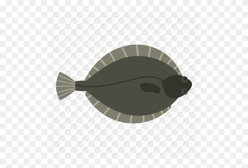 Animal, Fish, Flatfish, Flounder, Food, Fresh, Seafood Icon - Flounder PNG