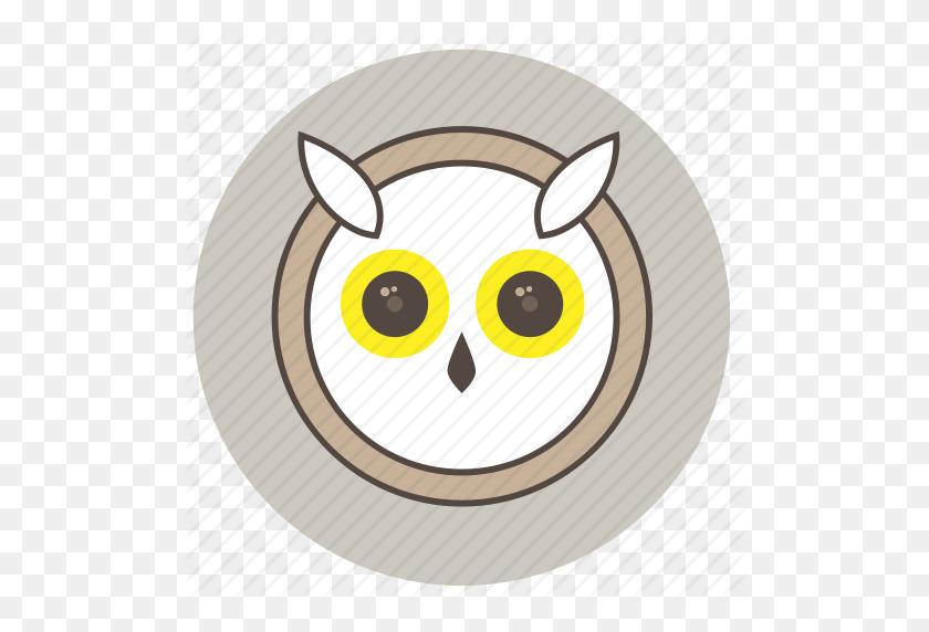 Animals, Big Eyes, Cute, Face, Night, Owl Icon - Big Eyes PNG