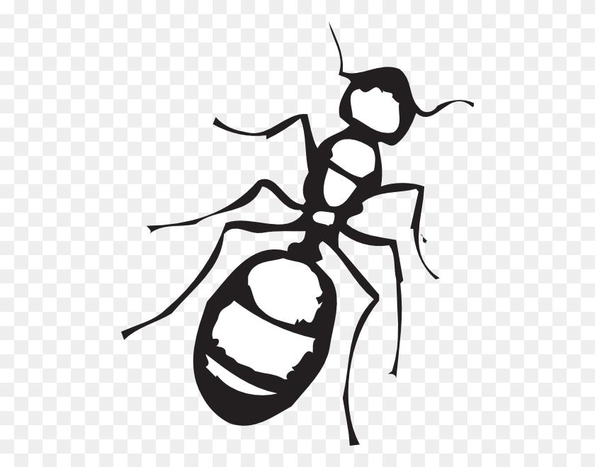 498x599 Ants Clipart Melonheadz - Melonheadz Clipart Black And White