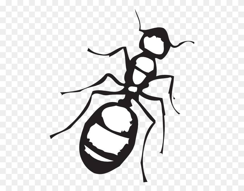 Ants Clipart Outline Pencil And In Color Ants - Pencil Outline Clipart