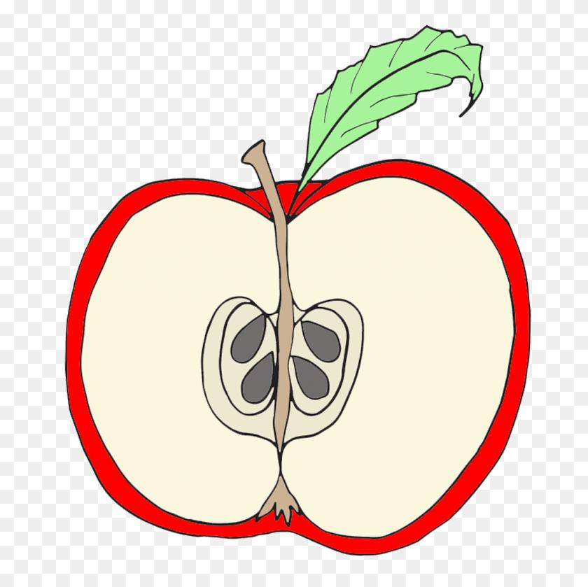 Apple Clipart Coloring Clip Art Free - Vinegar Clipart