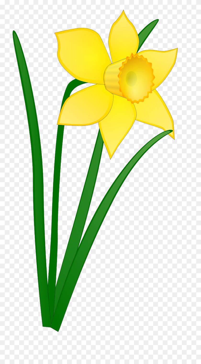 April Clip Art - April Flowers Clip Art