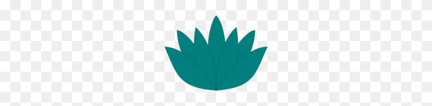 200x147 Aqua Lotus Flower Png, Clip Art For Web - Lotus Flower Clipart