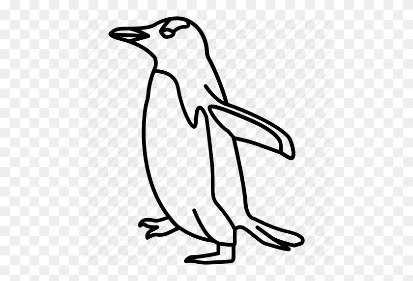 Aquatic, Bird, Fairy, Gentoo, King, March, Pengun - March Clip Art Black And White