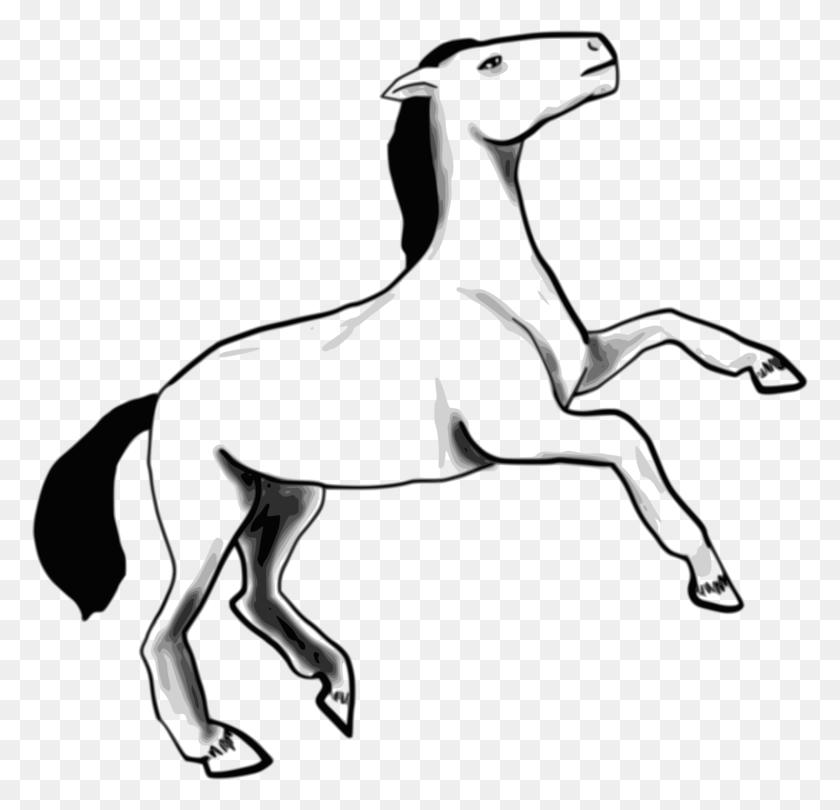 Arabian Horse Dog Pony Foal Computer Icons - Sled Dog Clip Art