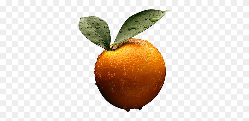 314x350 Are Oranges Your Favorite Fruit Marque Urgent Care - Oranges PNG