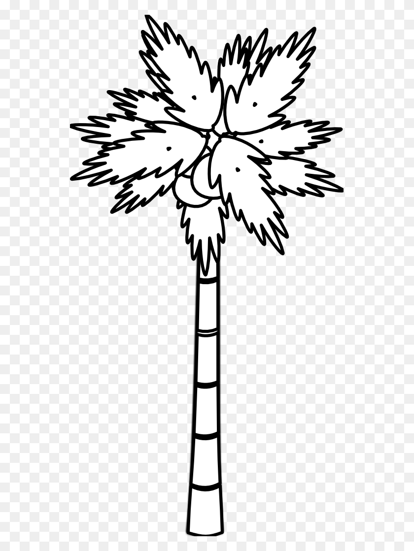 Arecaceae Black And White Tree Clip Art - Black Tree Clipart