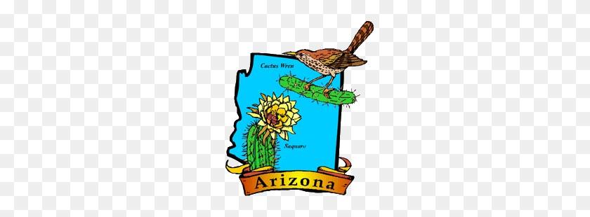 300x250 Arizona State Bird Flower Tree Flag - Arizona Clipart