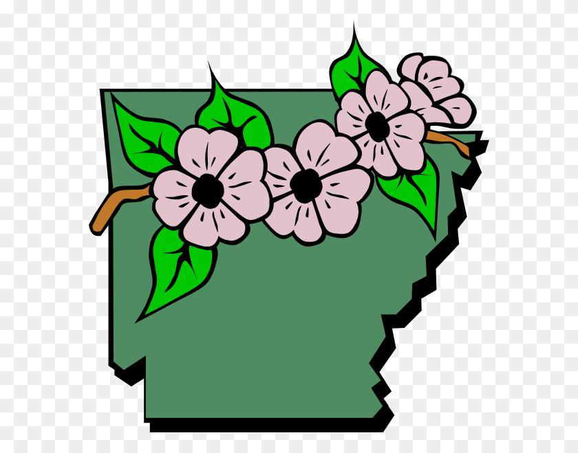 582x599 Arkansas State Flower Clip Art Free Image - Arkansas Razorback Clipart