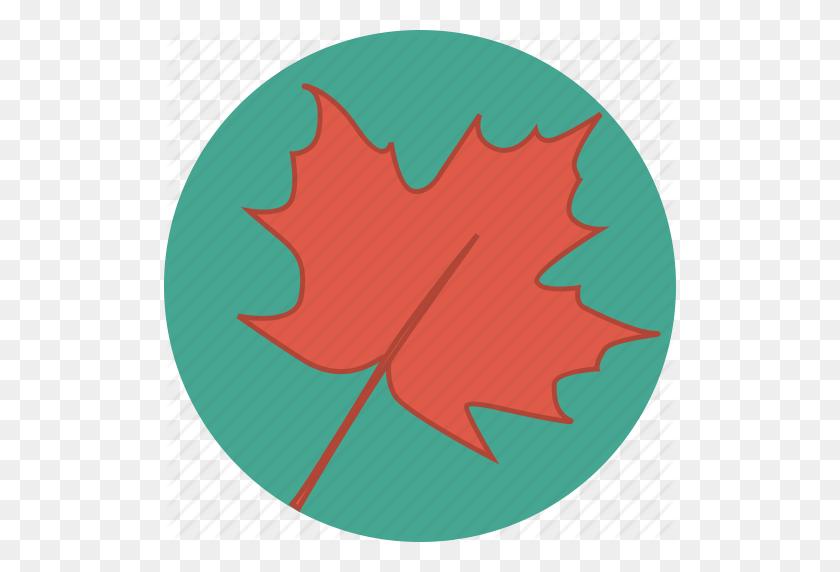 Autumn, Canada, Canadian, Fall, Leaf, Maple, Maple Leaf Icon - Canadian Leaf PNG